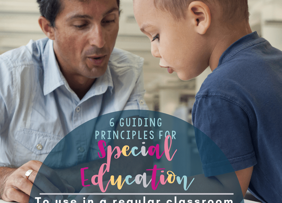 6 Guiding Principals for Working With Special Education Students in a Regular Class